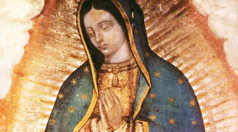 CELAM propone consagración del continente a la Virgen de Guadalupe ante pandemia COVID-19
