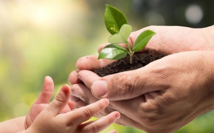 Papa Francisco al encuentro EcoOne: para una ecología integral hace falta una conversión interior