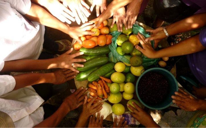 Semana Laudato Si': Tres seminarios web sobre seguridad alimentaria para un futuro equitativo