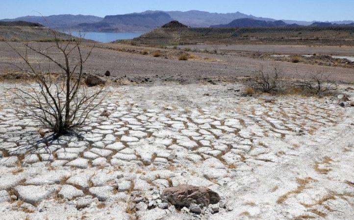 Sequía y desertificación: necesidades urgentes para el mundo