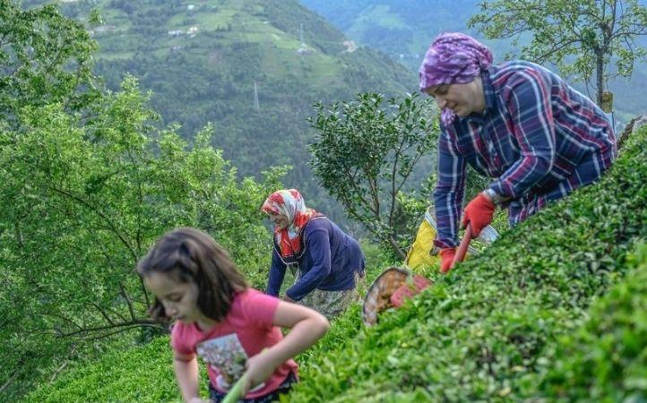 Caritas Internationalis: incluir a mujeres y agricultores locales en los sistemas alimentarios